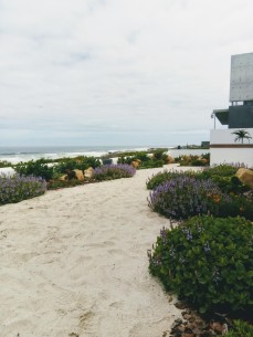 Chris Meyer Garden Design On the Beach